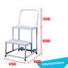 Warehouse Ladder LT-20