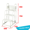Warehouse Ladder LT-21