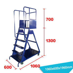 Warehouse Ladder LT-3