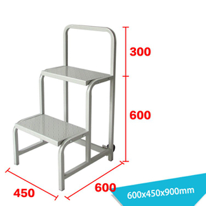 Warehouse Ladder LT-19