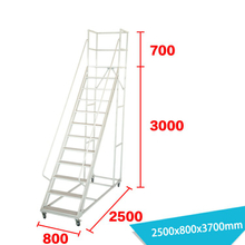 Warehouse Ladder LT-16