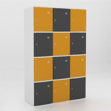 12 Door ABS Plastic Locker